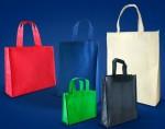 bolsas ecologicas de