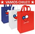 BOLSA ECO 25X30X8 VAMOS CHILE